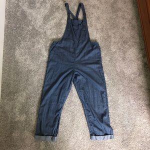 Aerie light weight overalls
